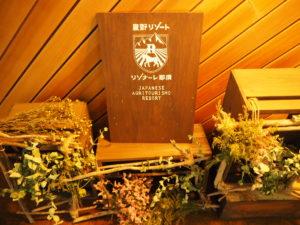 リゾナーレ那須 2泊3日 宿泊記 ブログ 【星野リゾート】